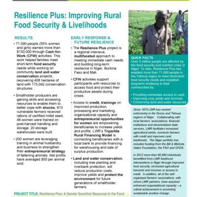 thumbnail of LWR_ResiliencePlus_Niger
