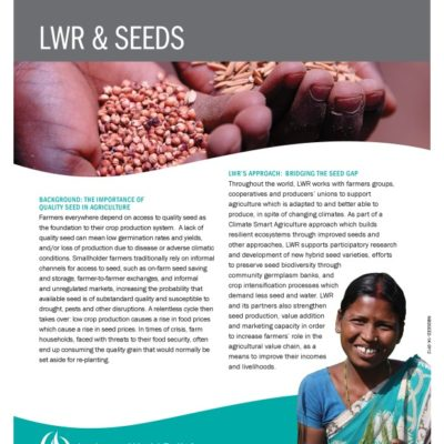 thumbnail of LWR_SEEDS