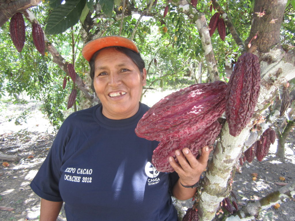 Maxima standing next to a cacao tree