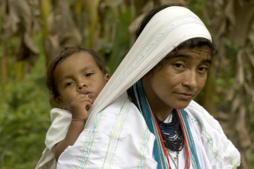 Eufemia Chaparro with her youngest Seyarimaku, 2, outside their home in the Sierra Nevada de Santa Marta mountains in Colombia. Lutheran World Relief has been providing technical support to the Arhuaco community in cocoa and coffee farming techniques. The Arhuaco have been systematically buying farms located on their ancestral homelands and repopulating them. LWR is supporting their initiative to transition to cocoa farming a crop that grows well in the hotter, wetter low lands, but is new to the Arhuaco community. Sara A. Fajardo for Lutheran World Relief