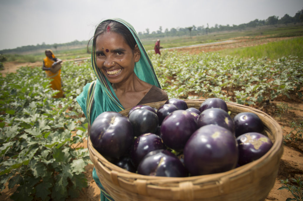 Mina Devi with basket of eggplant